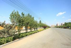 兴文西道道路绿化工程