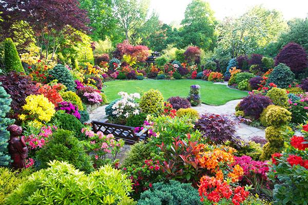 园林植物及其养护技术要点与质量控制