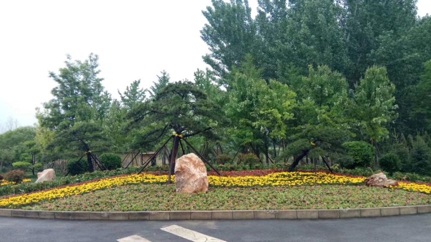 文安县世纪大道项目